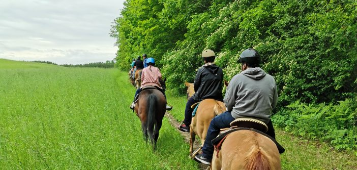Horseback Trail Riding at Trickle Creek Farm – Port Hope, Ontario (Canada)