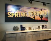 Planning a Vacation for Spring Training Baseball to Arizona – Cactus League?