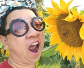 FREE VISIT – Lakeview Village Sunflower Fields + Walking Trail + Artwork & Sculpture – Mississauga, Ontario, Canada [ONTARIO TRAVEL SERIES]