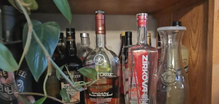 Zirkova – Why My Buddy Decided to get a Bottle of Zirkova at the LCBO